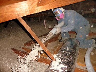 Cellulose Fiber Insulation Review | Insulation Reviews