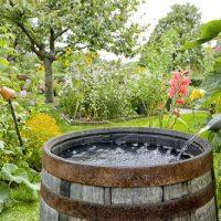 rain water harvesting barrel